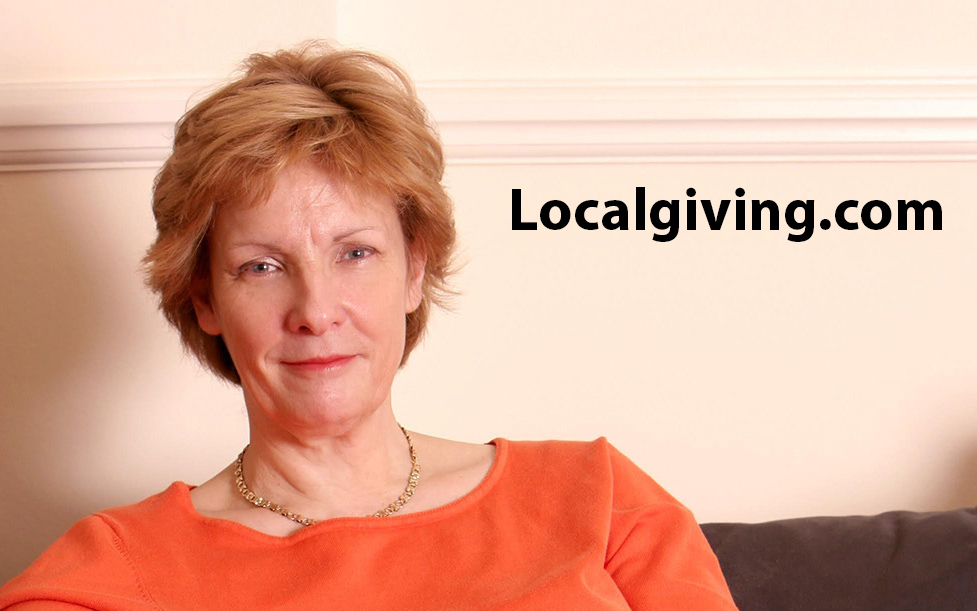 Marcelle spellers ambitions for localgiving com